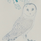 Barn Owl - Christmas Card