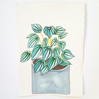 Original Watercolour House Plant Painting on A5 Khadi Paper