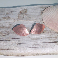 Textured Copper Fan Shaped Stud Earrings - UK Free Post