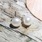 Freshwater Natural White Pearl on Sterling Silver Stud Earrings - UK Free Post