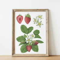 A4 strawberry watercolour art print