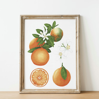 A4 orange watercolour art print