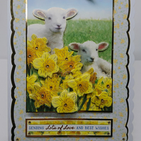 3D Luxury Handmade Card Birthday Easter Cute Lambs Spring Daffodils Any Occasion