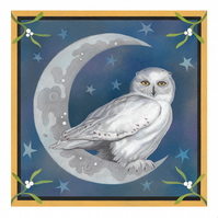 "Owl Giclee Art Print - ""Midnight Owl"""