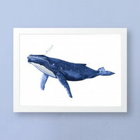 Cornish Humpback Whale Art Print, Wall Art, Unframed Art Print