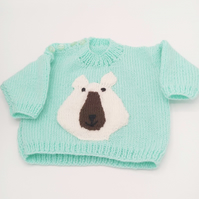 Round Neck Jumper with Polar Motif for Babies and Small Children, Novelty Jumper