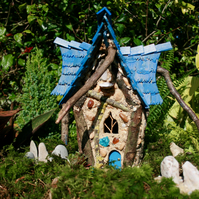 Light Blue Fairy Cottage - Cyanescens