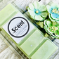Eucalyptus & Spearmint Snap Bar Wax Melts