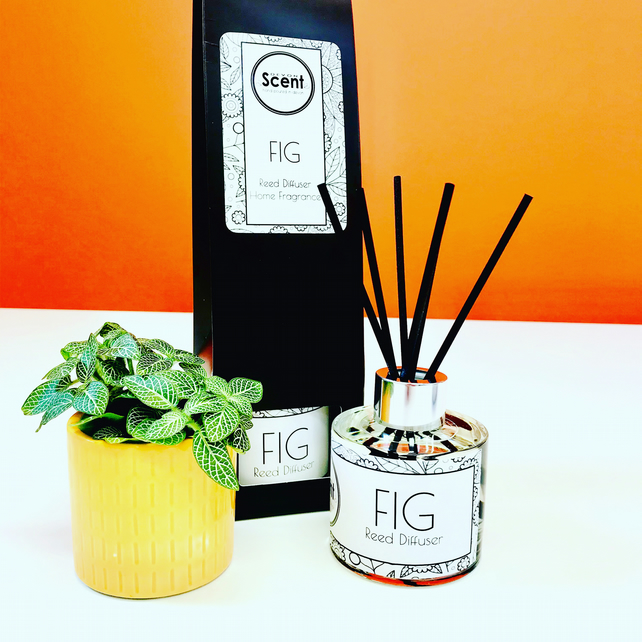 FIG Home Fragrance Reed Diffusser