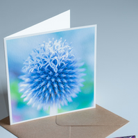 Fine Art Photo Card 'Globe Thistle'