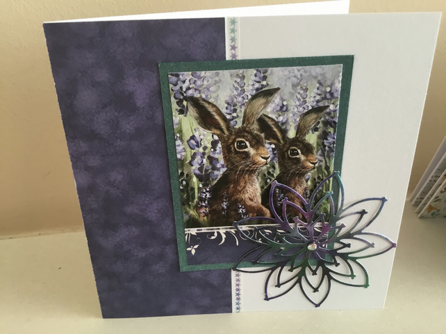 Two hares in purple