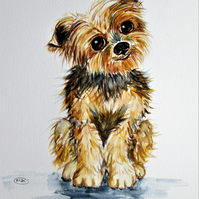 Yorkshire Terrier Puppy Painting