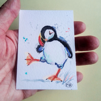 Puffin miniature ACEO Original Painting