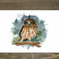 Owl Hardboard Placemat Set Of 6