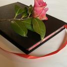Black, red & pink: a writer's book