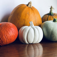 Craft Kit- Paint Your Own Pumpkin