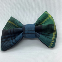 Blue, Green and yellow stripe Tartan  dog or cat dickie bow