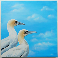 'Gannets' - acrylics on canvas