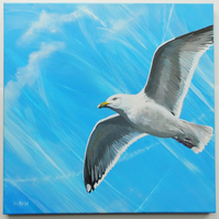 'Gull' - Acrylic paints on frame canvas