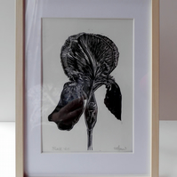'Black Iris' - Framed lino prints