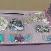CRAFT KIT. PAINTING SHELLS KIT.