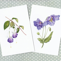 Botanical Flower Cards, Blue Poppy and Fuchsia, pack of two