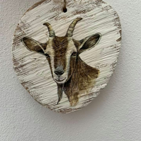 Country plaque GOAT HEAD