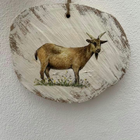 Country plaque- GOAT BODY