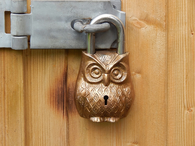 Owl Padlock Brass finish with two keys.