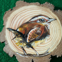 Wren in oils on wooden coaster