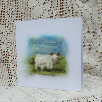 Birthday card Cheviot Sheep  Lamb Needle felt wool card