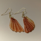 Small seaside shell earrings
