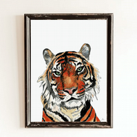 Tiger Wall Art Print - African Animal Safari Art - Tiger Wall Decor