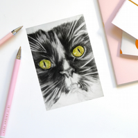 Birthday card, greeting card, cat, black and white Maine Coon - TEHI
