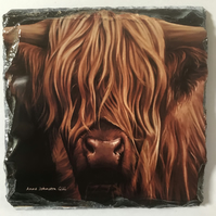 Cow coaster, Highland cow coaster,slate coaster