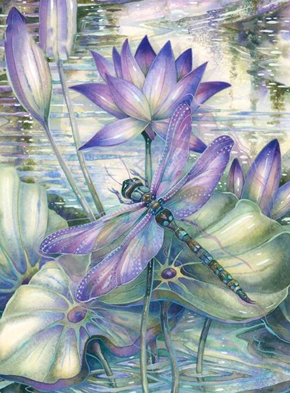 DRAGONFLY COLOURED CHART CROSS STITCH KIT