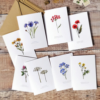 8 x Wildflowers printed notecards & envelopes