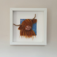 Highland cow picture