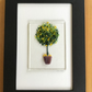 Lemon tree in tub picture in 6x4ins black frame