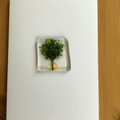 Olive tree blank greetings card A6