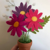 Needle felted daisies