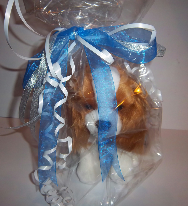 Toy Blenhiem King Charles Spaniel Gift wrapped and personalised engraved tag