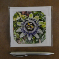SALE - Passion Flower White Blank Card