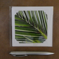 SALE - Palm Leaves White Blank Card