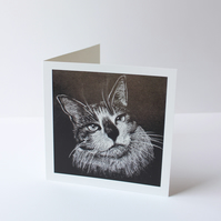 Cat Drawing Greetings Card