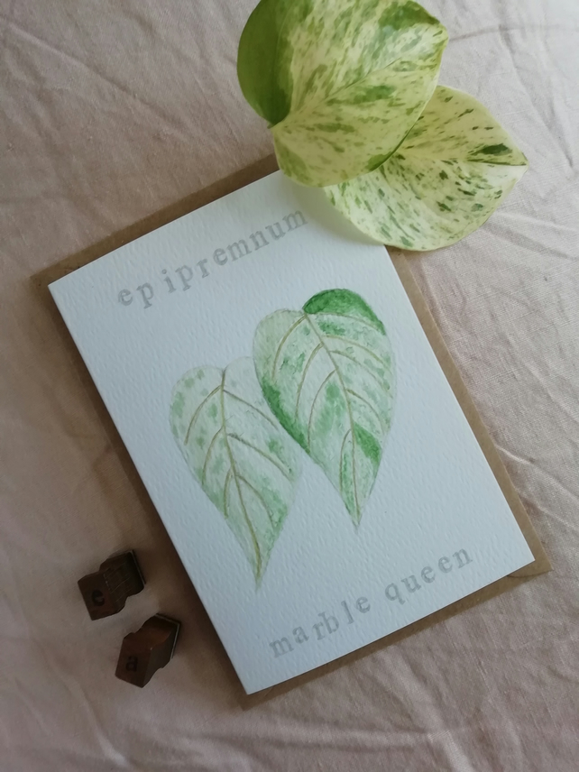 Hand painted watercolour card, notecard, epipremnum aureum , marble queen pothos
