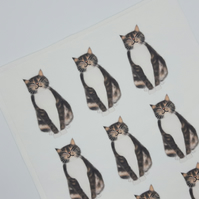 Cat Tea Towel, Cats, Tabby Cats, Illustrated, Cat, Cotton, Microfibre, Tea Towel