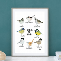 British Bird Print, British Tits, British Wildlife, Art, Gouache, Illustration