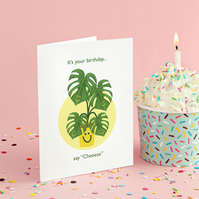 Cheese Plant, Birthday Card, Monstera, Swiss Cheese, Plant, Happy Birthday.