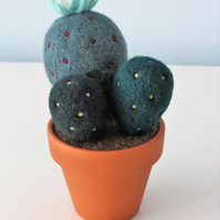 Merino Wool Needle Felted Succulent